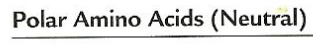 picture - amino 3