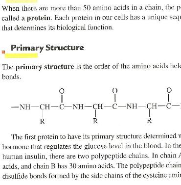 picture - amino  8