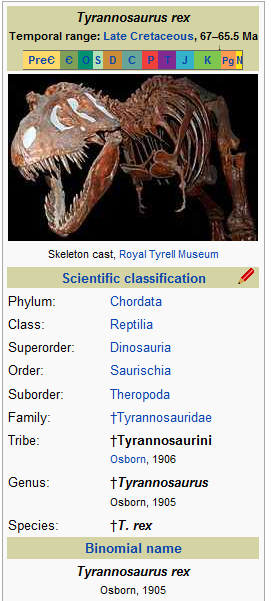 picture - T rex 2